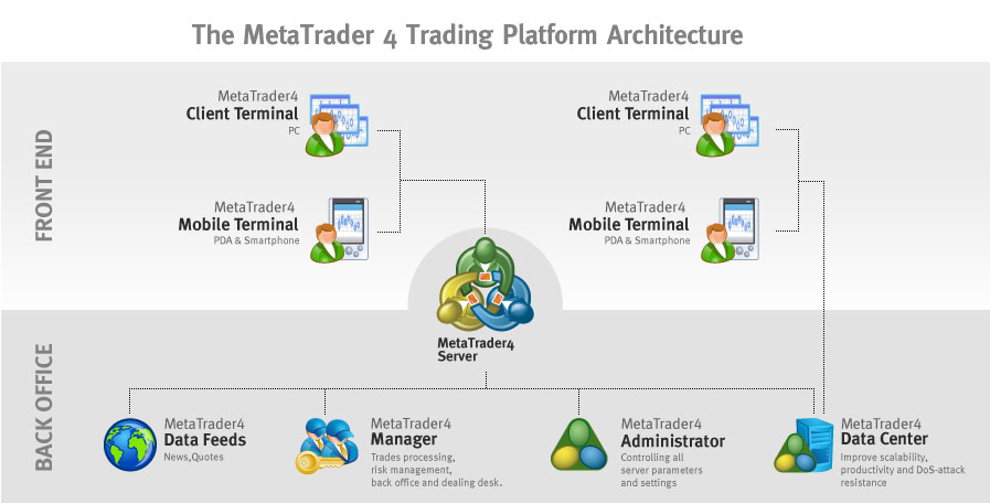 MetaTrader 4 Platform Review
